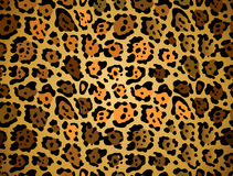 Seamless leopard pattern Royalty Free Stock Images