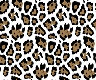 Seamless Leopard Skin Pattern for Textile Print for printed fabric design for Womenswear, underwear, activewear kidswear vector illustration