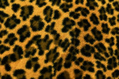 Seamless leopart texture Stock Image