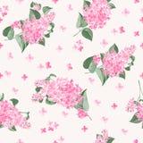 Seamless lilac pattern Stock Image