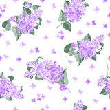 Seamless lilac pattern Royalty Free Stock Photography