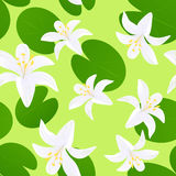 Seamless lily background Stock Image