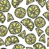 Seamless Lime Slices Background. Pattern of Citrus. Doodle Style Vector Illustration. Stock Photos