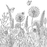 Seamless line pattern with wildflowers  and insects Stock Photography