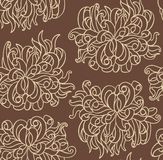 Seamless line vector with chrysanthemum flowers Stock Image