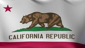 Seamless Loop Flag of California. High detailed waving flag of different countries from all over the world stock footage