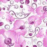 Seamless mönstra av purpurfärgade orchids Arkivfoto
