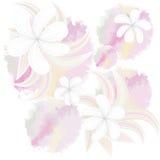 Seamless mönstra med härliga blommor Arkivfoton