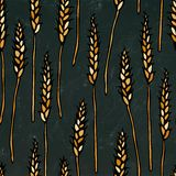 Seamless with Malt. Beer Pattern. Isolated on a Black Chalkboard Background. Realistic Doodle Cartoon Style Hand Drawn Stock Photography