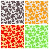 Seamless Maple Leaf Pattern. In four variations Stock Images
