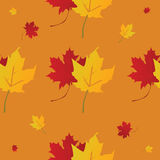 Seamless maple leaf wallpaper Stock Photo
