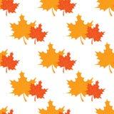 Seamless maple leafs pattern Stock Photos