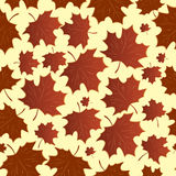 Seamless with maple leaves Royalty Free Stock Photography