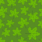Seamless maple leaves pattern Stock Images