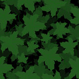 Seamless of Maple leaves. Pattern of forest leaves for your design Stock Photography