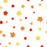 Seamless Maple Pattern Stock Photography