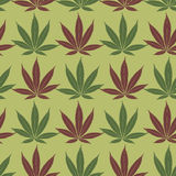 Seamless marijuana red and khaki leaves pattern. Stock Images