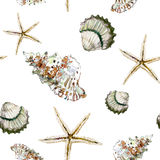 Seamless marine pattern with brown shells and starfish on white Royalty Free Stock Image