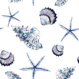 Seamless marine pattern with shells and starfish on white backgr. Ound. Watercolor painting. Hand painted. Can be used for fabric, wallpaper, wrapping paper Royalty Free Stock Photo