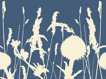 Seamless meadow flowers. Royalty Free Stock Image