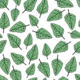 Seamless modell för handdraw gröna leafs också vektor för coreldrawillustration stock illustrationer
