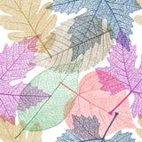 Seamless modell med färgrika Leaves vektor för häftklammer tre för gingham för blomma för kantprickar eps10 vaddera Royaltyfria Bilder