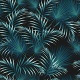 Seamless modell med tropiska leaves Ljust - gröna palmblad på den svarta bakgrunden vektor illustrationer
