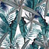 Seamless modell med tropiska leaves Mörka och ljusa palmblad på den ljusa bakgrunden royaltyfri illustrationer