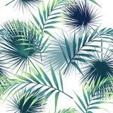 Seamless modell med tropiska leaves Mörkt och ljust - gröna palmblad på den vita bakgrunden vektor illustrationer