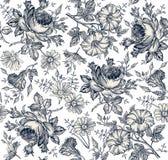 seamless modell Realistiska isolerade blommor för prydnadpapper för bakgrund geometrisk gammal tappning KamomillRose Petunia vild arkivbilder