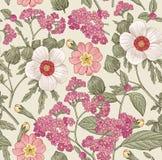 seamless modell Realistiska isolerade blommor Vektor för gravyr för teckning för hibisc för primavera för hibiskus för tappningba Royaltyfria Foton