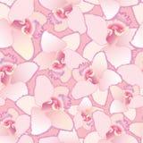 Seamless modellbakgrund med vita blommor, eller stock illustrationer