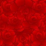 seamless modellredrose Royaltyfria Foton