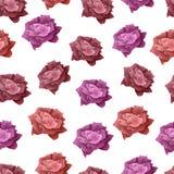seamless modellrose Rött och rosa blomma steg Royaltyfri Foto