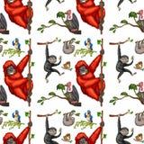 Seamless monkeys and birds Royalty Free Stock Photos
