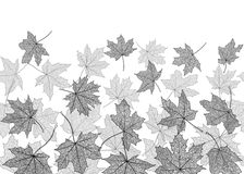 Seamless monochrome autumn leaves Royalty Free Stock Photography