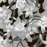Seamless monochrome floral background with lilies Royalty Free Stock Images
