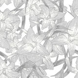 Seamless monochrome floral background with lilies Stock Photography
