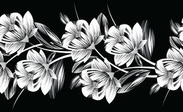 Seamless monochrome floral border Stock Images