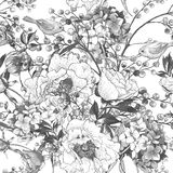 Seamless monochrome floral pattern with Birds Royalty Free Stock Image