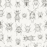 Seamless monochrome pattern with bugs Royalty Free Stock Photos