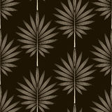 Seamless monochrome pattern graphic ornament. Floral background Royalty Free Stock Images