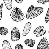 Seamless monochrome pattern with sea shells. Royalty Free Stock Photos