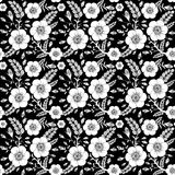 Seamless monochrome pattern with wild rose Stock Images