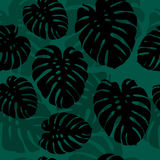 Seamless monstera palm leaves silhouettes pattern vector illustration