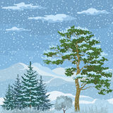 Seamless, Mountain Winter Landscape Royalty Free Stock Photography