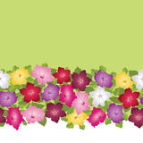 Seamless multicolor pattern with white flowers Stock Photography