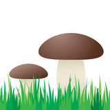 Seamless mushroom in grass. Stock Photo
