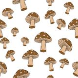 Seamless Mushroom Pattern! Vector eps10 Stock Photography