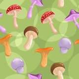 Seamless mushrooms background. Cute  seamless background with different mushrooms Royalty Free Stock Images